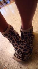 Cuddly leopard(s)