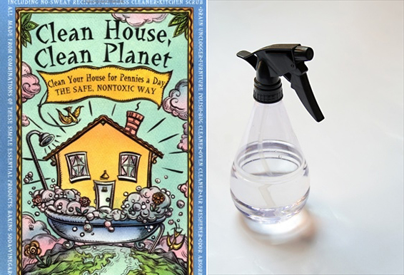 Smock Eco Reads - Clean House, Clean Planet
