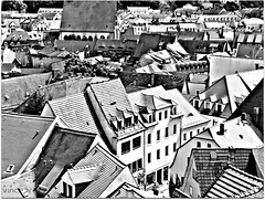 Roof Top View (VincePrey) Tags: old houses roof red summer vacation bw sun rooftop buildings germany walking town famous sunny 2009 meissen rooftiles