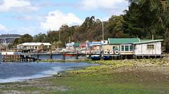 Tassie boat sheds (zuvaluvaluva) Tags: tassie