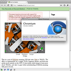 Mac Chromium 4.0.222.2 (28391) - WebGL (was) enabled
