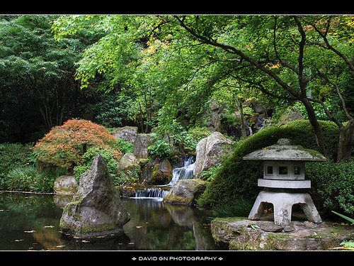 The Waterfall at Portland Japanese Garden 2 by David Gn Photography