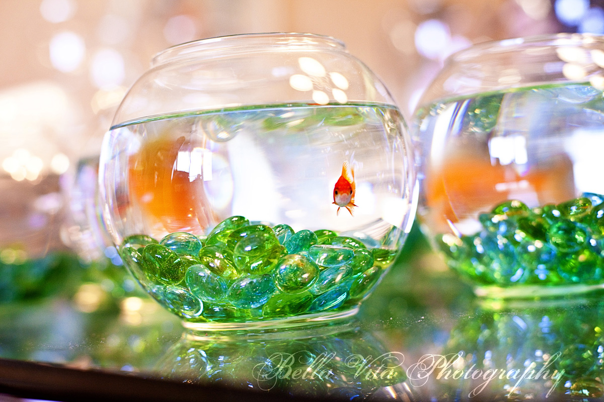 Fish Bowl Centerpieces for Weddings