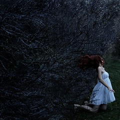 (carrie lynn.) Tags: trees red portrait tree me up self hair fight hand dress stuck branches release fast give strong caught carrieunger