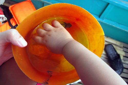 euma grabbing papa's prized fish
