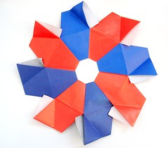 unit polyedron