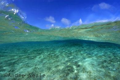 Dia dos Oceanos 2009