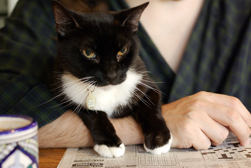 helping with the Sudoku