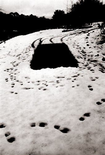 1998_snow ideogram projection-space at HepSprings