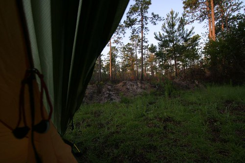 Wild camp near Georgetown, South Carolina.