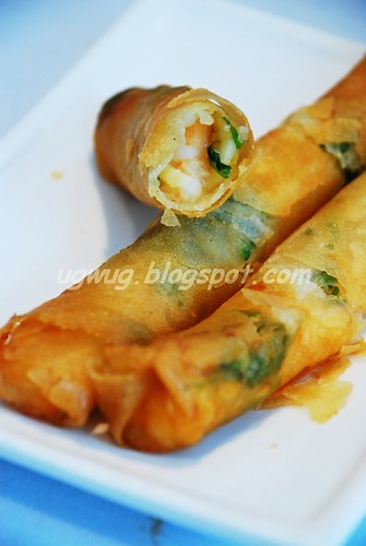 Deep Fried Shrimp Rolls