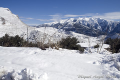 IMG_8092 (Miguel Angel Mora (GSi_PoweR)) Tags: espaa snow andaluca carretera nieve nevada sunday bosque granada costadelsol domingo maroma mlaga mountainroad meteorologa axarqua puertomontaa zafarraya sierraalmijara caosalcaiceria