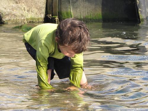 sea digging