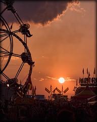 252:365 Fair or Amusement Park