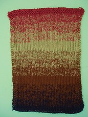 025 Autumn Lake Swatch