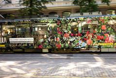 Streetcar / Raitiovaunut