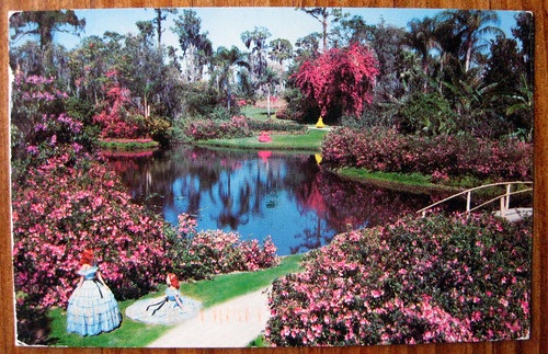 Beautiful Cypress Gardens