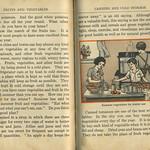 Vintage book: canning summer vegetables thumbnail