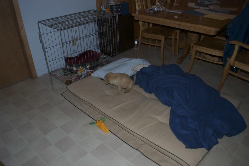 Sleeping arrangments