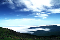 Above Clouds (Moustapha B) Tags: travel sky mountain green clouds eos freedom spring colorful heaven iran happiness 7d ایران 90 18200 بهار سبز بهشت مصطفي خاطره 2011 کوه ابر آسمان آبی سبزه moustapha mazichal رنگارنگ مازيچال