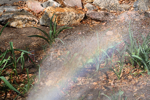 104-rainbow water