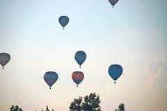 Freedom Weekend Aloft Balloons-6