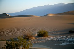 Death Valley National Park-419