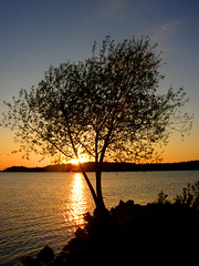 Late sunsets are here again (Per Ola Wiberg ~ Powi) Tags: nature may sunsets explore harmony 2009 soe pictureperfect maj musictomyeyes mlaren goldenglobe awesomeshot otw cherryontop thegalaxy eker goldenmix mywinners abigfave royalgroup 14karatgold nrlunda peaceaward dreamscametrue diamondclassphotographer flickrbronzeaward flickrsilveraward heartawards photostosmileabout exemplaryshotsflickrsbest wonderfulworldmix goldsealofquality betterthangood dazzlingshots picturesworthathousandwords photoexplore flickrestrellas crazyaboutnature fromdream arealgem ilovemypics atravsdaminhalentethroughmylens explorewinnersoftheworld beautifulshot fotosconestilo damniwishidtakenthat abovealltherest grupodehablahispana photographersgonewild vosplusbellesphotos freedomhawk lostrotamundo photographerparadise artofimages thebestvisions saariysqualitypictures phoddstica fotografiayotros crazyaboutnatureawards mmmilikeit exquistecapture mostbeautifulpictures bestofdamniwishidtakenthat favoritepictures oracope championsphotography lapetitegaleriethelittlephotoshoppe winnerstop fabulousplanet naturesqualitypictures 1001nightsmagiccity mygearandme level1photographyforrecreation