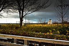 IMG_0579 (Spieler Family) Tags: strand seebrücke boltenhagen seebrcke