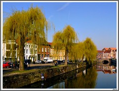 Willows over the river - Ghent (jackfre2 (on a trip-voyage-reis-reise)) Tags: city trees houses cars water beauty reflections river t creativity photo amazing belgium group culture roofs wealthy fabulous leie flanders surprising the willowtrees ghen platinumphoto flickraward flickrestrellas