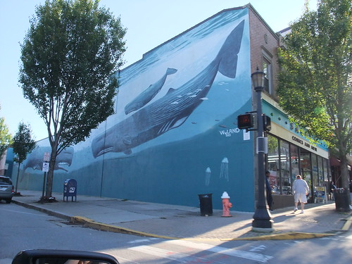 whale mural in New London