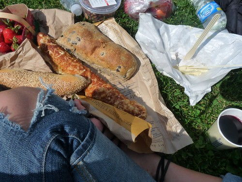 montreal picnic1