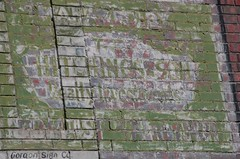 Mystery Message (pam's pics-) Tags: city urban brick green advertising colorado denver pam signage co morris sig citycenter lodo ghostsigns unreadable pammorris nikond40 denverpam hutchinsonrealty