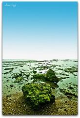 Piedra porosa volcada en la arena (albertogl 77) Tags: espaa costa atardecer nightshot sony playa cadiz nocturna alpha crepusculo filters picnik ballena exposicion larga chipiona a300 cokin sigma1020 largeversion nd2 121l albertitoglez