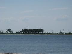IMG_0171 (rembassmaster) Tags: lighthouse beach water docks boats coast boat highway warf fishermen ships shrimp ms seafood biloxi 90 shrimping gulfport shrimpboats gulfcoast highway90 shiponbeach
