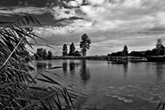 Biking in the 'Kreken' area (Veerle Pieters) Tags: creek belgium flanders vlaanderen oostvlaanderen meetjesland eastflanders sintlaureins vroukeshoekkreek