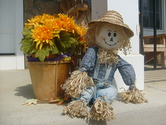 The Happy Scarecrow Welcomes Fall