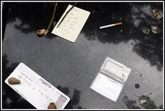 Cimetière de Montmartre -  Francois Truffaut (normandie2005_horst Moi_et_le_monde) Tags: friedhof cemeteries paris france cemetery grave graveyard graveyards cementerio tomb montmartre graves cemitério tombs cimetiere tombe begraafplaats cimitero cimetière hautausmaa cmentarz groblje בית kirkegård cementerios sementeryo necropole cemiterio cimitirul cementiri cemitérios hřbitov cimiteri المقبرة кладбище cimetières friedhoefe temető kapinės pemakaman cintorín cimiteris цвинтар pokopališče הקברות kapos mezarlığı νεκροταφείο varrezat гробље гробището कब्रिस्तान ċimiterju ป่าช้า