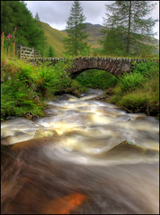 Down River Smaglen (angus clyne) Tags: bridge summer green rain river scotland stream flood perthshire rapids burn lichen ferns spruce flikcr spate smaglen colorphotoaward impressedbeauty
