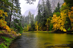 Rainy day on the Merced - Yosemite National Park, California (Darvin Atkeson) Tags: usa storm fall america reflections landscape us nationalpark fallcolor merced yosemite darvin   atkeson  darv   liquidmoonlightcom