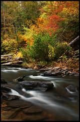 Fall Rush (remy fauxtog) Tags: creek forest waterfall alabama salt falls national remy talladega fauxtog