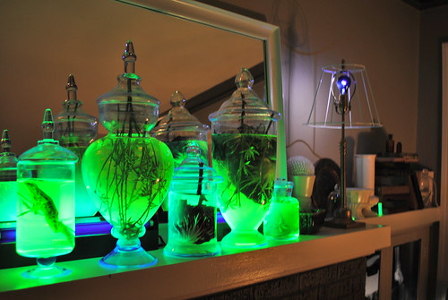 Glowing Specimen Jars on Mad Scientist's Mantle