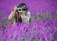 The Photographer (Spice  Trying to Catch Up!) Tags: camera travel pink november plants holiday man black flower color macro green japan canon lens geotagged asian person photography eos japanese flora asia photographer hand purple head finger coat lavender vivid blogger livejournal human photograph strap  vox  tao   2009  fotgrafo  gettyimages facebook  friendster multiply  photographe  11     twitter  lalaki      2009    hybridis imagemonster  familygetty2010