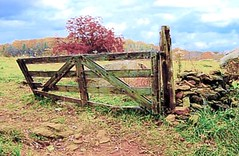 Triangular Field Gate (becky04181949) Tags: gettysburg cwpt10bf