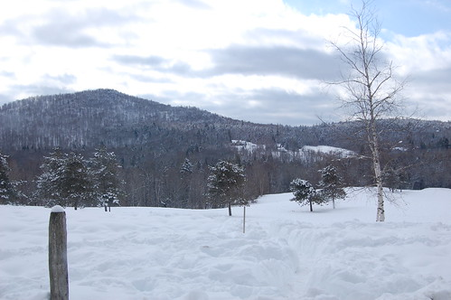 View from the top  of the sledding hill