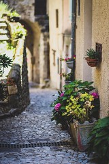 Small street somewhere in South France (jordihin) Tags: bokeh canon 18 80mm flowers street france