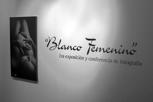 """Exposición """"Blanco Femenino"""""""