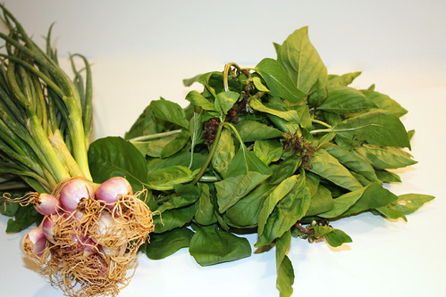 Basil and Green Onions