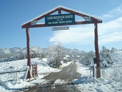 Lone Mountain Ranch Entrance, Wagyu Cattle