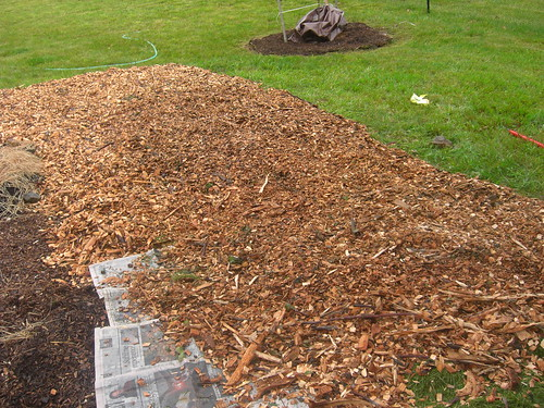 Layer of wood chips to make a garden bed